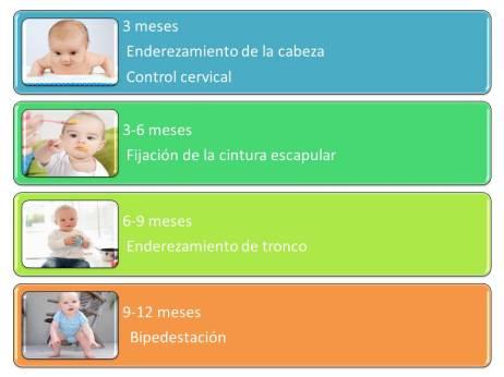 posicionamiento-bebe
