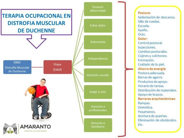 Amaranto Terapia Ocupacional Duchenne